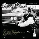 Snoop Dogg Tour