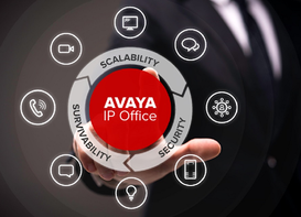 Avaya Security