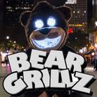 Bear Grillz Live Video