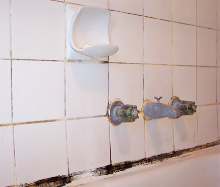 Bathroom Grout tile grout cleaning service | chicago, il, repair, sealing