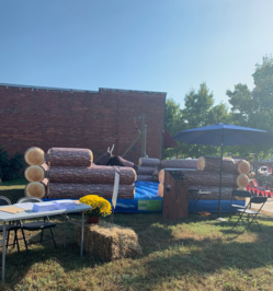 Mechanical Bull rental Ringgold GA