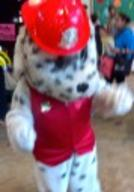 Marshall, Paw Patrol style Party Character