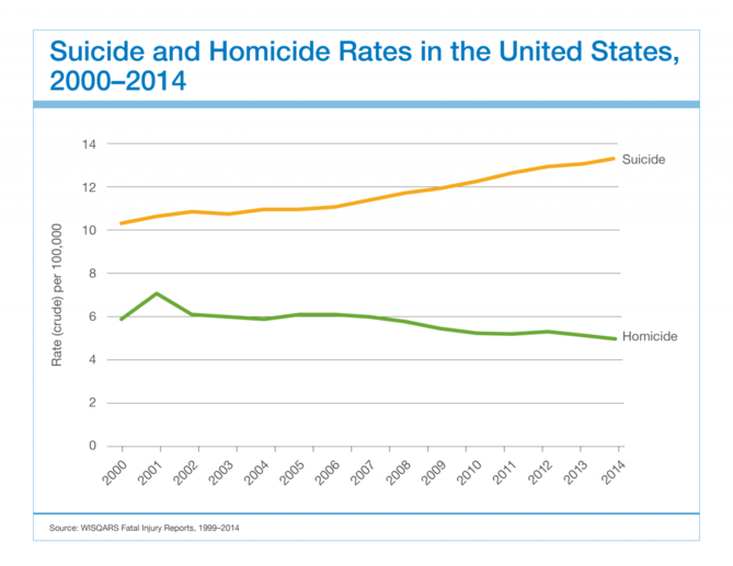 suicide_and_homicide_rates_in_the_united_states_2000-2014.png
