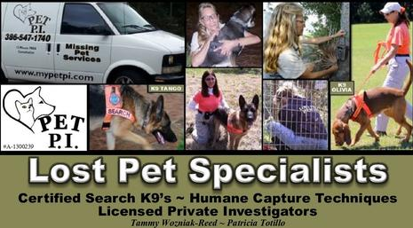 PET PI Lost Pet Specialists providing professional services, advice, and expertise aiding in the safe recovery of lost pets