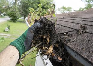 Houston roof maintenance benefits; blocked gutters; roof maintenance assistance in Houston; roof maintenance assistance; Texas roofers; how to protect my roof; roof maintenance benefits