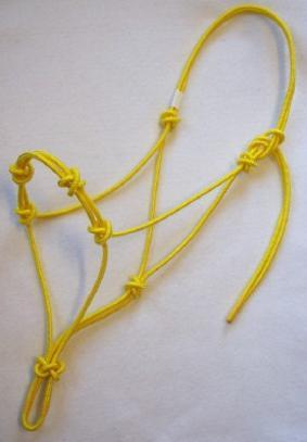 extra knots rope halter