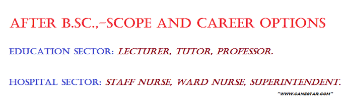 after bsc, gnm, anm nursing, career option
