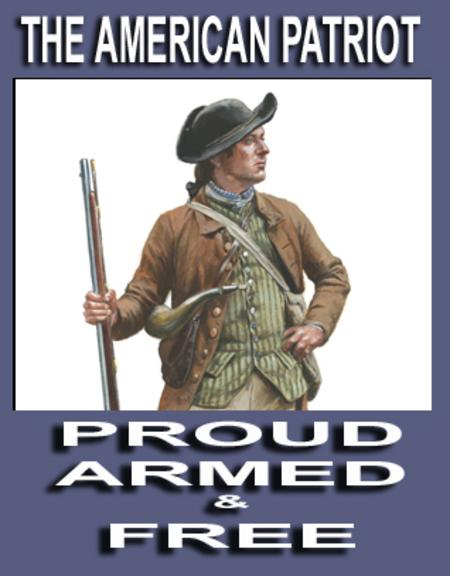What a militia used to be, and properly still is.