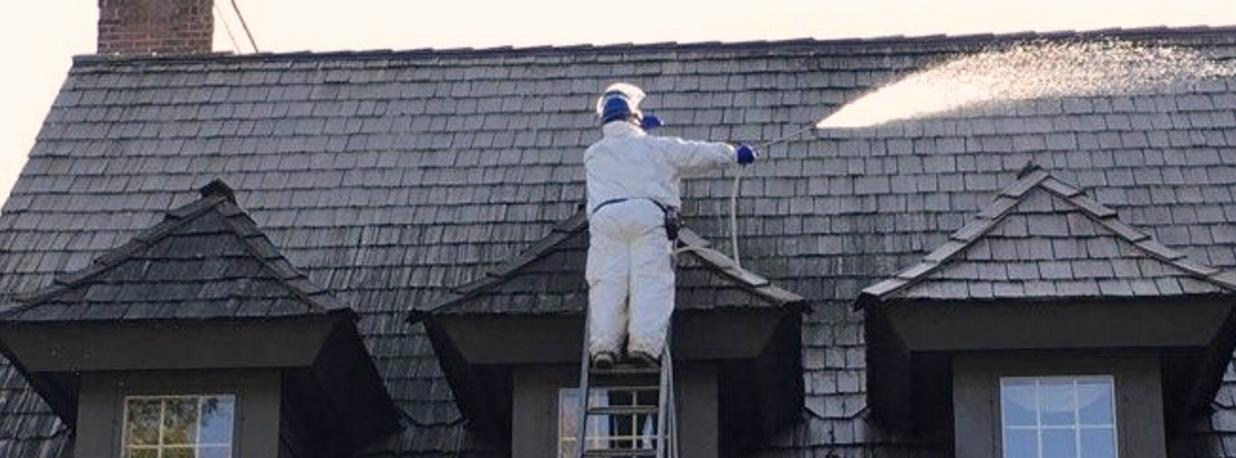 low-pressure cleaning, exterior cleaning, roof cleaning, siding cleaning, soft-wash cleaning, restoration, exterior maintenance
