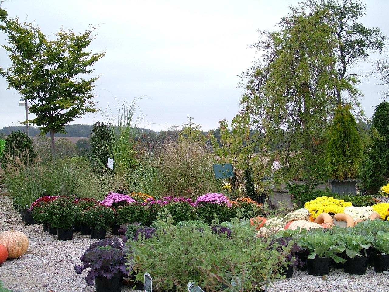 superior nursery u0026 garden center in new freedom pa