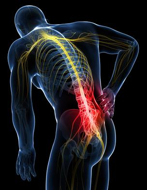 Low back pain Denver Chiropractor