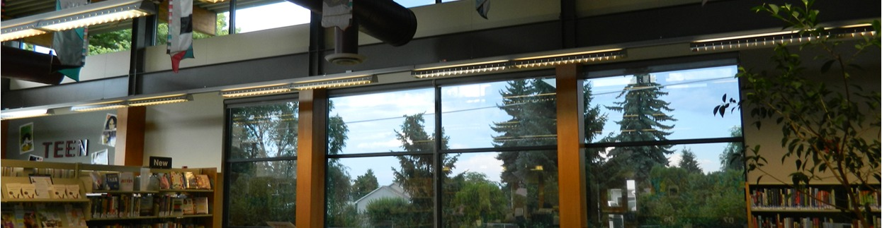 Panorama Slate 10 for glare/heat control in Airway Hts Library