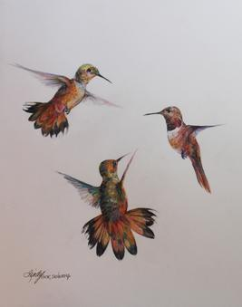 Flight, a trio of hummingbirds in a colored pencil drawing by Texas artist Lindy C Severns