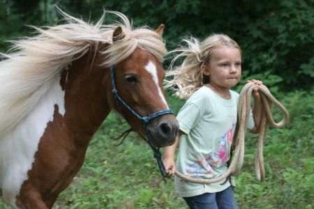 Best Summer Horse Camp, fun, Charlotte NC, Indian Land SC