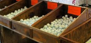 Top Quality Golf Balls sold right here in Panama City Beach, FL