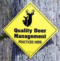 quality deer management