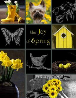 The Joy of Spring Fundraiser Brochure