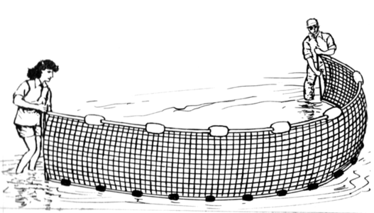 drawing of a seine net