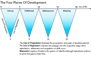 Human Tendencies and the four planes of developement - Montessori Print Shop