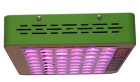 grow your own tobacco-with led grow lights