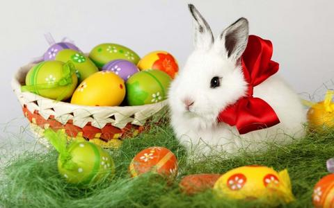 Easter Bunny Chicago. Fun for St. Patrick's Day, Passover or Easter Party. Hire The Easter Bunny, Baby Chicks, Bible Characters: Moses, Elijah. Irish Leprechauns, for Hire.