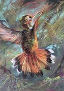 "The Sky's Conductor 7""x5"" pastel hummingbird by Lindy C Severns"