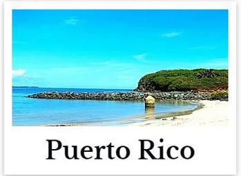 Puerto Rico Online CE Chiropractic DC Courses internet on demand chiro seminar hours for continuing education ceu credits
