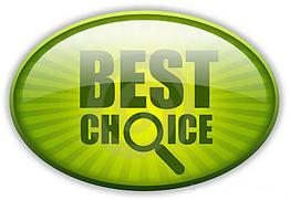 Best Choice For Bed Bug Extermination In Toronto