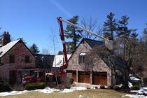 Tree Pruning Farmington CT
