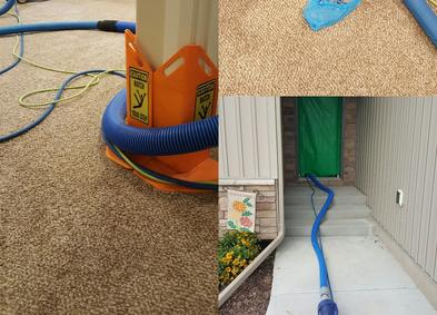 High quality carpet cleaning, tile & grout cleaning, upholstery cleaning, and rug cleaning for Idaho Falls