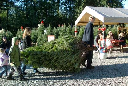 Welcome | Frostys Family Christmas Tree Farm | Langley, BC