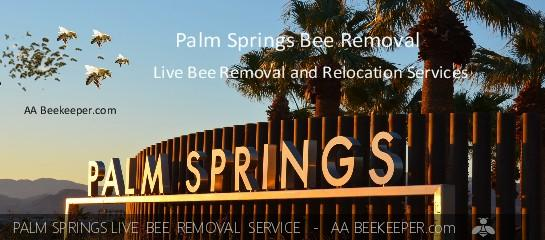 Palm Springs Bee Removal