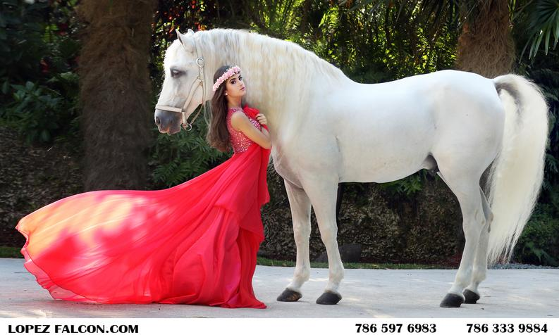quinceanera white horse secret gardens quince quinces photography video dresses
