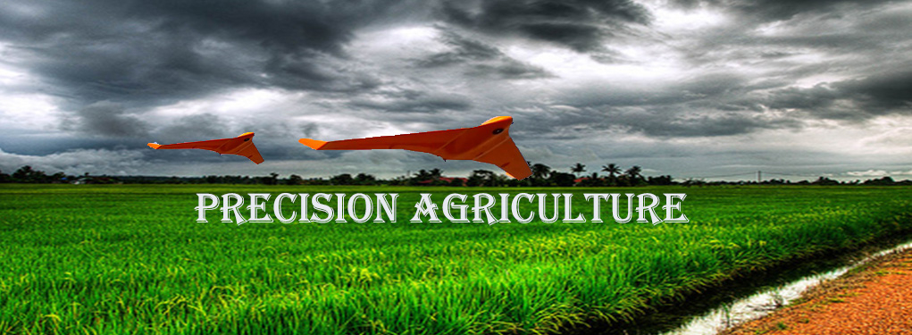 Geoprecision tech - Drone Services, Oil Palm, Agricultural Services