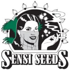 Sensi Seeds on Time 4 Hemp