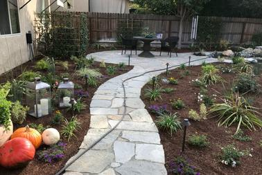 California Turf & Landscaping: Landscapers and landscaping design company - picture of a drought-tolerant landscape backyard