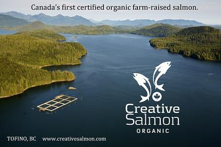 Creative Salmon Website