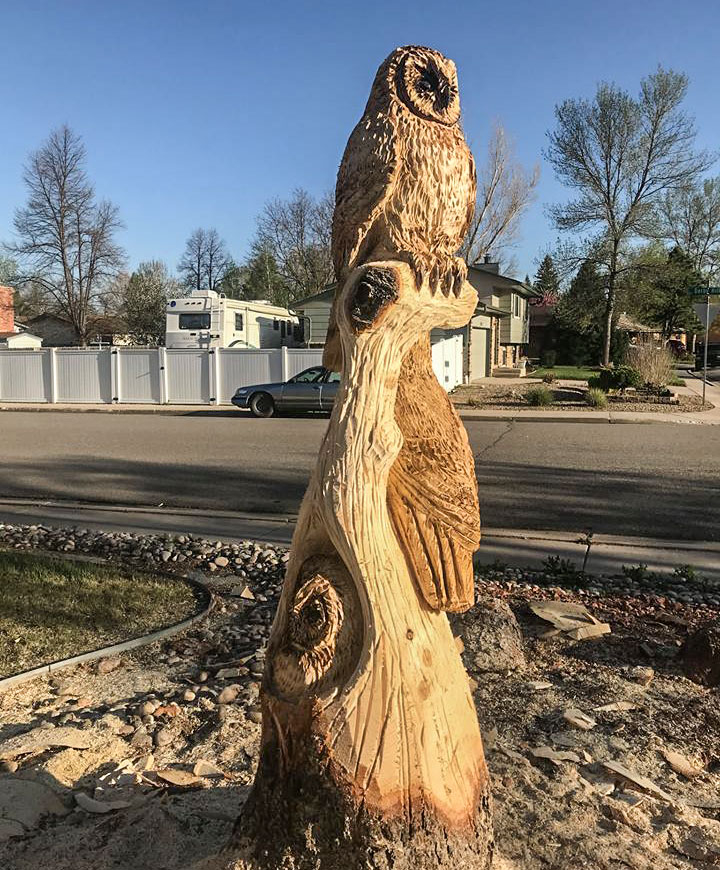 Chainsaw carving of owls and chainsaw carving of birds