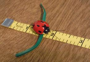decorative ladybug plant ties, nursery ties