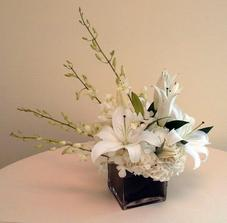 NB-5CW1 Hydrangea, Dendrobium Orchids, and Lilies