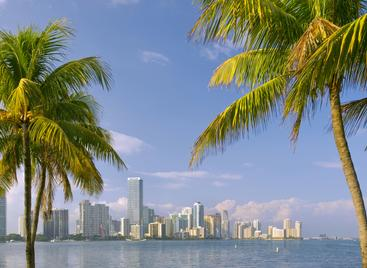 Luxury condos on the beach Fort lauderdale Miami Beach
