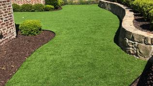 artificial grass dallas