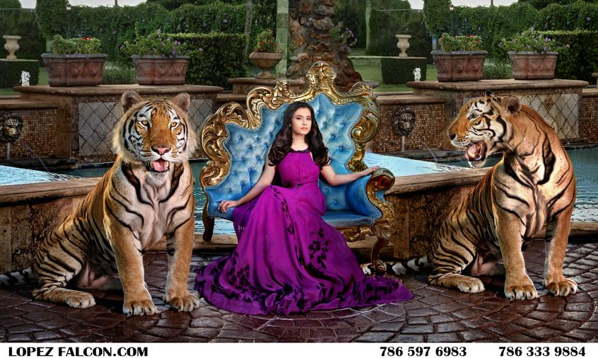Quince Photography Miami Tiger The Secret Gardens Quinceanera Dresses Video Quinces dress