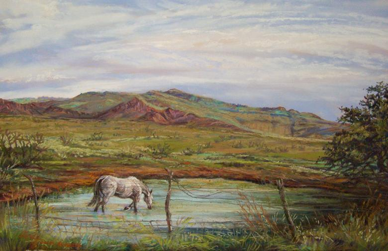 A Long Cool Drink, original Texas landscape painting by Fort Davis artist Lindy Cook Severns. Framed pastel, a white horse wades a Davis Mountains tank in the heat of summer. Old Spanish Trail Studio, Fort Davis TX