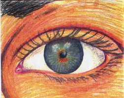 color sketch of eye