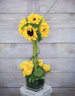 6 inch square vase arrangement with 6 sunflowers