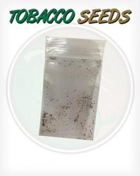Tobacco Seeds for growing your own Tobacco