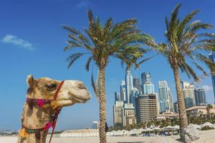 DUBAI: Super Saver, City Sightseeing Tour and Desert Safari - from $110.00 per person