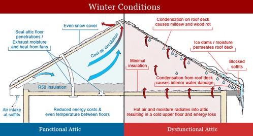 Attic insulation ccuart Image collections