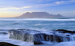 Cape Town Home removal Services